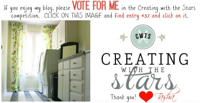 Creating with the Stars vote