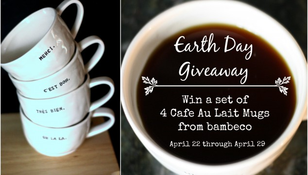 Earth Day Giveaway from Designer Trapped in a Lawyer's Body and bambeco! #earthday #giveaway