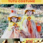 tutu scarecrow costume