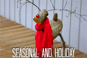seasonal and holiday2