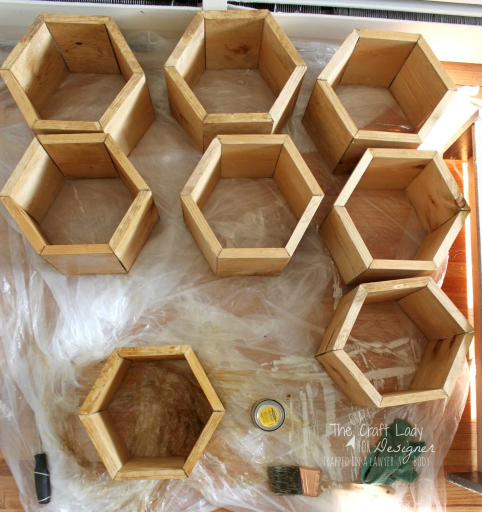 GENIUS! Make a DIY shoe rack using an old bookshelf and making hexagon inserts to hold the shoes! Full tutorial by The Crazy Craft Lady for Designer Trapped in a Lawyer's Body.