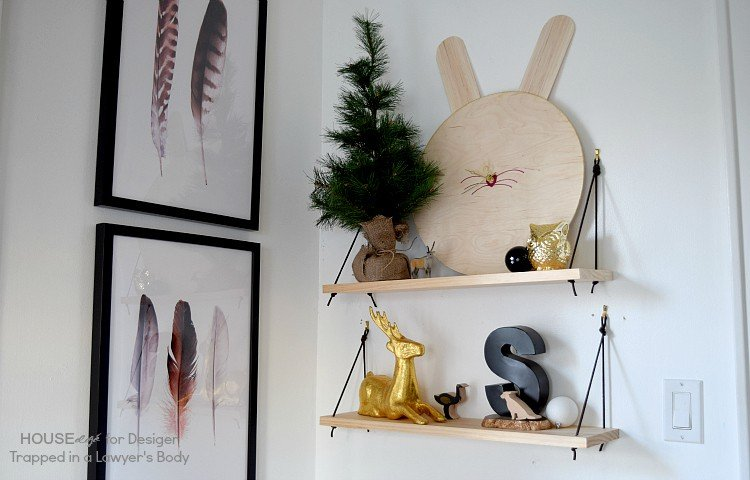 WOW! Easy hanging shelves using 2 pieces of pine and leather strings.