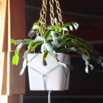macrame-planter-thumb