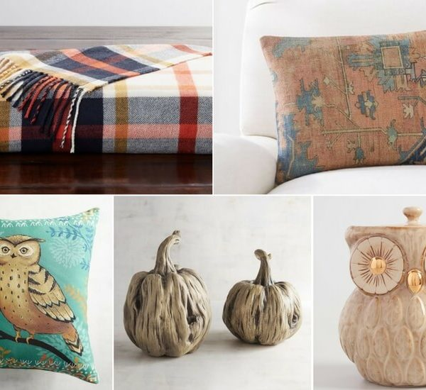 You don't have to spend a fortune to decorate for the season! Add a touch of Fall to your home with some of these cozy Fall decor options.
