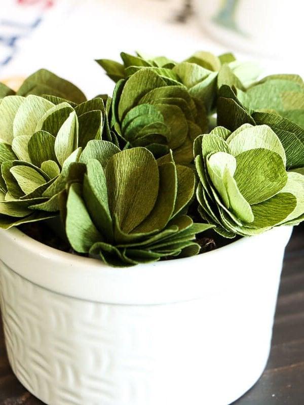 Cricut Cutting Review: DIY Crepe Paper Succulents