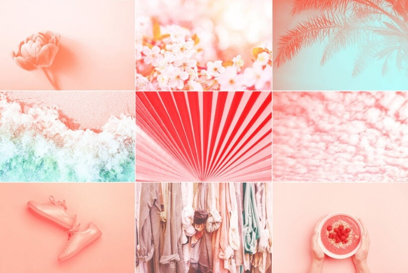 Collage made of nine photos in trendy living coral color. Trendy color of the 2019: Living Cral and Limpet Shell.