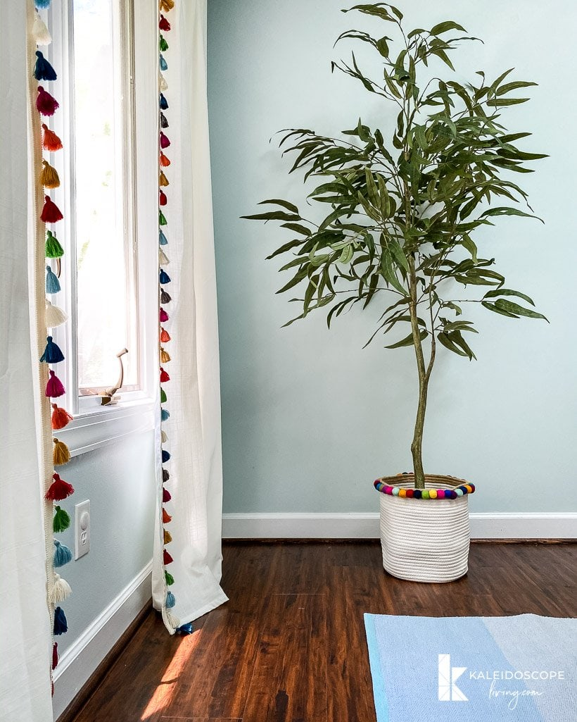 tassel curtains and plant