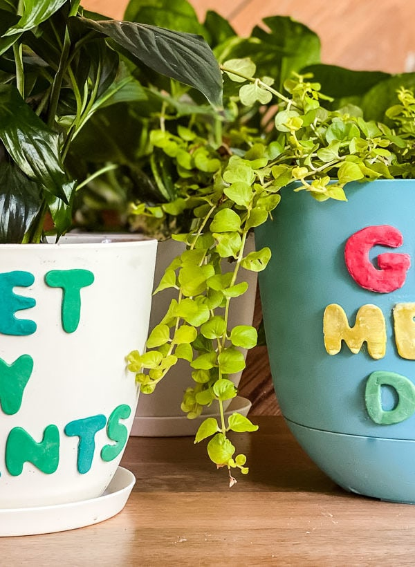 How to Decorate Plant Pots With Polymer Clay (and a sense of humor)